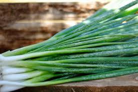 eschallots - Celery Half