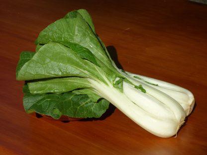 P1060394 416x312 - Chinese Vegetables - Pak Choi
