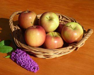P1060381 324x260 - Apples - Fuji 500g *New Season