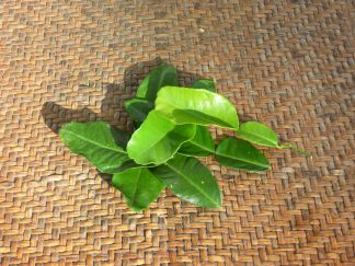 P1060526 2 324x243 - Kaffir Lime Leaves