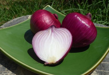 Red Onions 416x287 - Onions - Red Salad