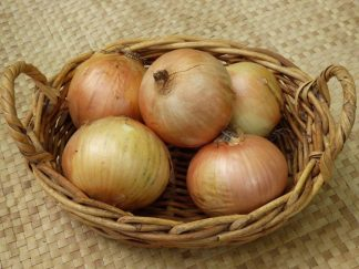onion 324x243 - Onions - Brown