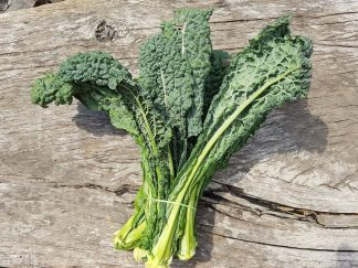 Kale Cavelo Nero 324x243 - Kale - Green Curly bunch