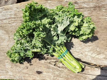 Kale green curly 416x312 - Kale - Green Curly bunch