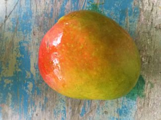 Mango R2E2 324x243 - Mangoes - R2E2 *big fruit