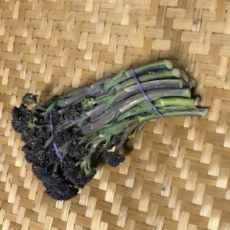 Broccolini 324x324 - Broccolini - Purple