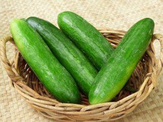 Lebanese cucumbers 324x243 - Cucumbers - Lebanese