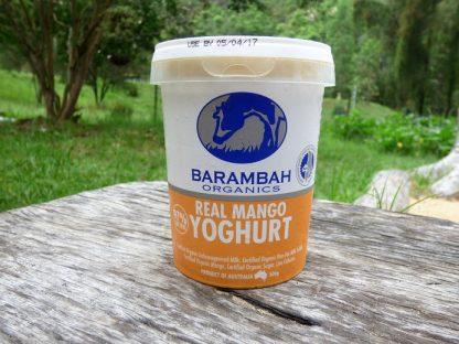 P1070652 416x312 - Yoghurt - Mango