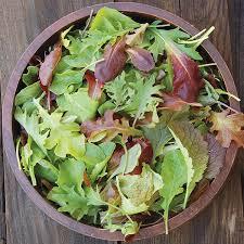 mesculan - Mesculan Salad Mix