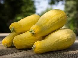 Yellow squash - Yellow Squash