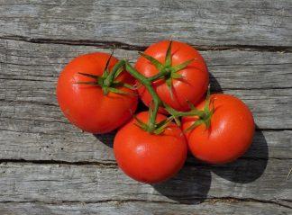 tomatoes truss 324x239 - Tomatoes - Truss