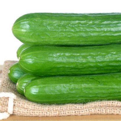lebanese cucumbers 2 416x416 - Cucumbers - Lebanese