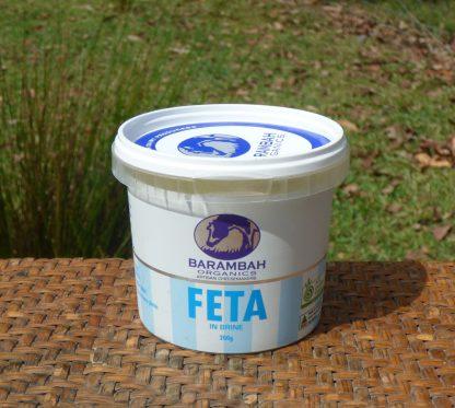 Cheese Feta in Brine 416x373 - Cheese - Cow's Milk Feta in brine