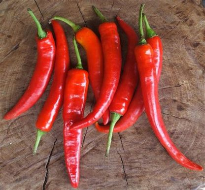long red chilli 416x386 - Chillies - Long Red