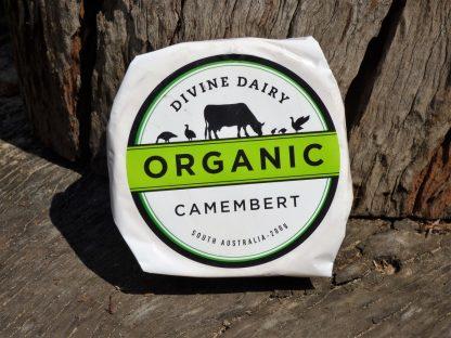 Camembert Divine Dairy 416x312 - Cheese - Camembert